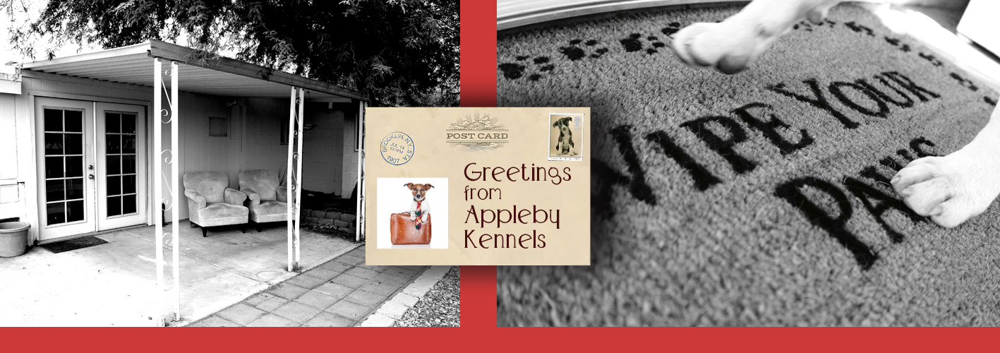 Appleby Kennels-Affordable Boarding with Care